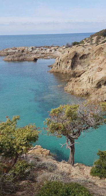 Mediteranean sea 2 BeMed Website